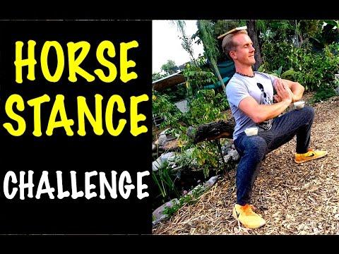 Amazing Kung Fu HORSE STANCE - YouTube Challenge!