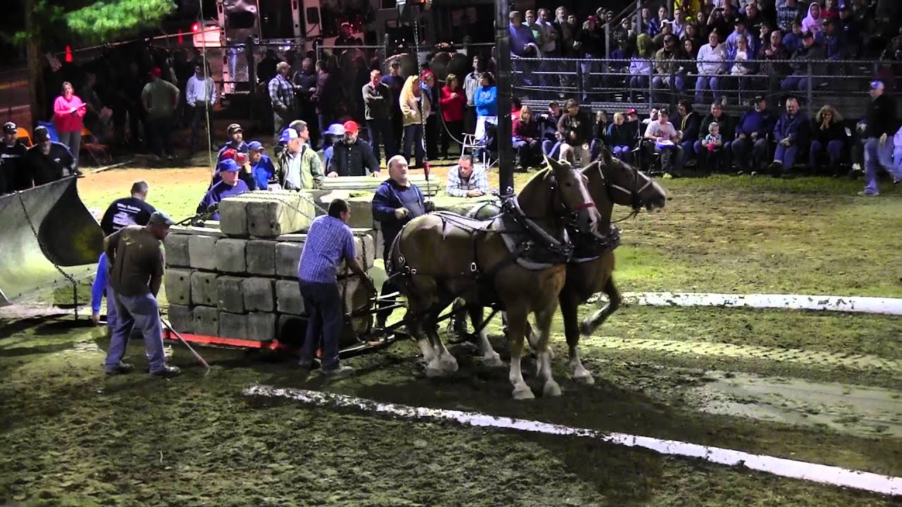 Download Draft Horse Pull 2013 Deerfield Fair NH Pulling Video 56