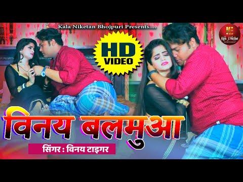 2020-का-सबसे-हिट-गाना-|-विनय-बलमुआ-|-vinay-tiger-|-new-bhojpuri-song-2020-|-kala-niketan-bhojpuri