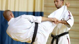 Методика тренировки маваши гери в косики каратэ. Олег Эстон