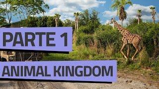 ROTEIRO ANIMAL KINGDOM // PARTE 1 thumbnail
