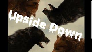 Twilight Wolves - Upside Down ( Remix )