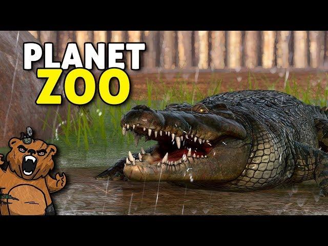 O Pântano dos Crocodilos | Planet Zoo #04 - Sandbox Gameplay PT-BR