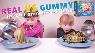 REAL VS GUMMY FOOD CHALLENGE special CROK TA BOX • Animaux en folie en bonbons ou réels ? - #SBT