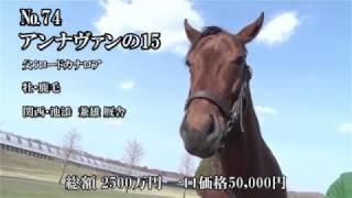 募集総額2500万円 一口価格50000円 栗東・池添兼雄厩舎.