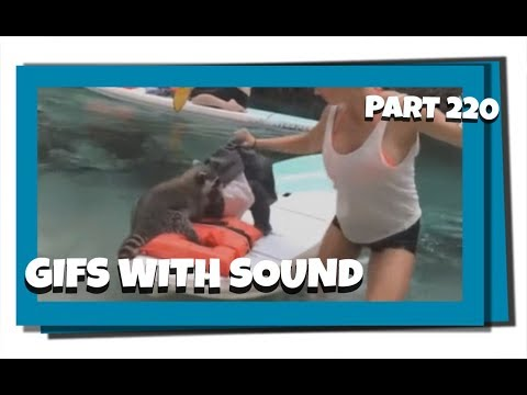 Gifs With Sound Mix - Part 220