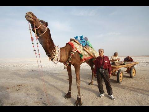 Gujarat Trip Part I - Bhachau, Bhuj, Dasada, Kala Dungar