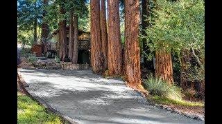 США 5663: Секвойный лес - горная калифорнийская дорога из Санта Круз в Боулдер Крик