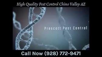 High Quality Pest Control Chino Valley AZ