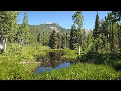 Private Mountain Escape FOR SALE In Durango, Colorado