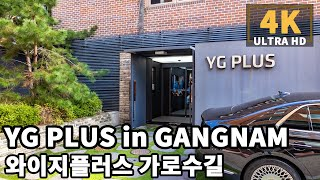 [4K] Walk to YG PLUS building …