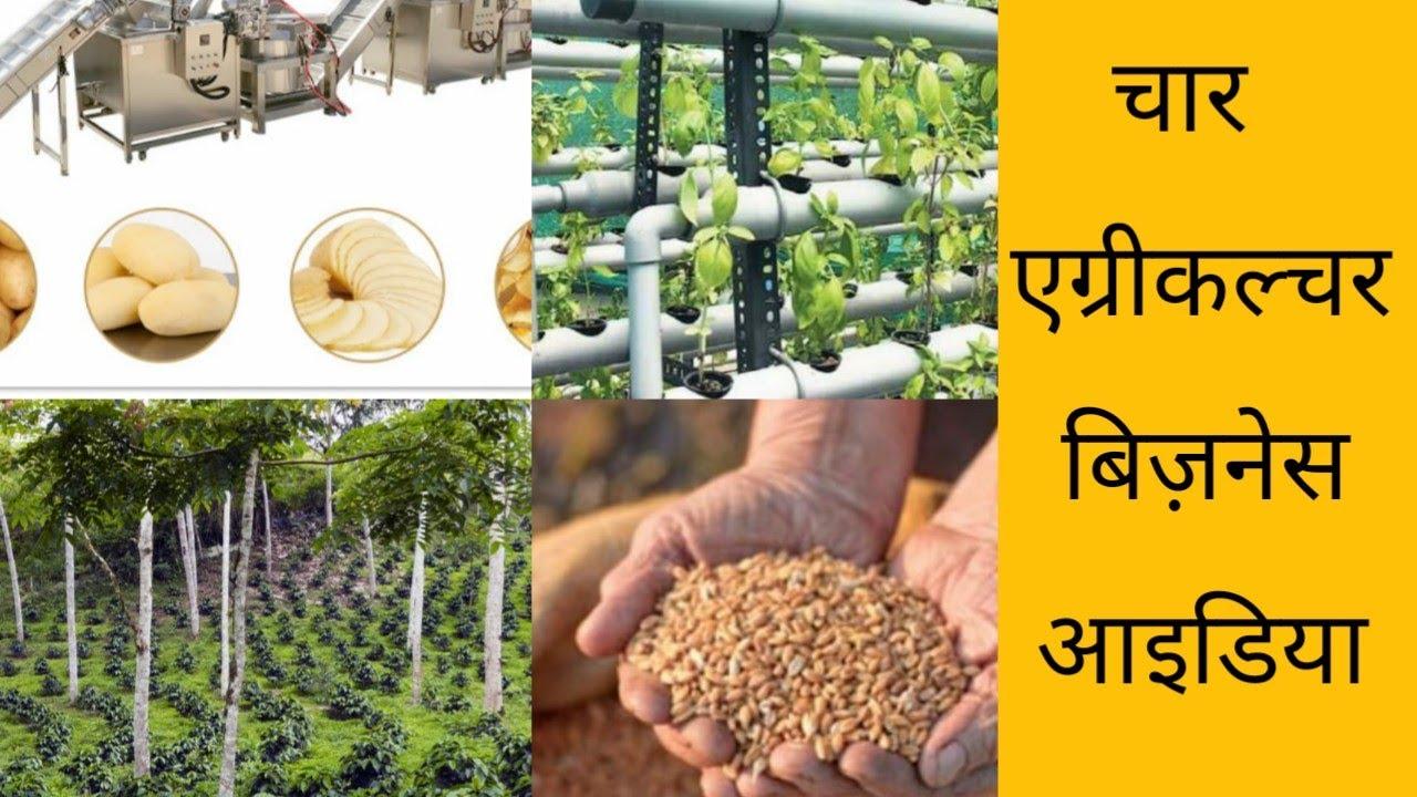 4 एग्रीकल्चर बिजनेस आईडिया । इन Agriculture Business Ideas से किसान करें अपनी आमदनी दोगुनी