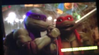 Niga turtles.