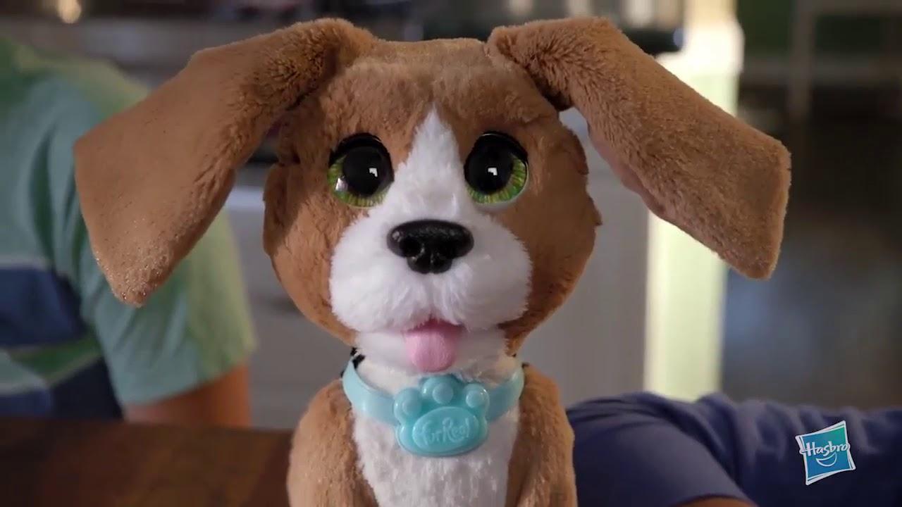 250 €. Щенки московской сторожевой и сенбернара ищут своих хозяев!. Продам щенков лабрадор-ретривера. Продаю щенка бигль с паспортом.