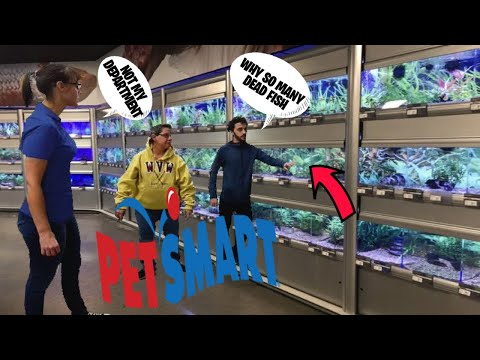 THE VIDEO THAT PETSMART DOES NOT WANT YOU TO SEE, THE NASTIEST PETSMART IN THE CITY OF HOUSTON?