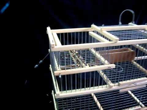 multidetector trap cage for sale cage pi ge multireprise deux tr buchet a vendre youtube. Black Bedroom Furniture Sets. Home Design Ideas