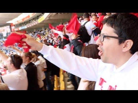 Perú contra Nueva Zelanda en Wellington - Vlog