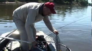 Летняя ловля щуки и судака(Это видео рассказывает о нескольких днях, проведенных на Ахтубе. О непростых условиях рыбалки в самый разга..., 2013-01-14T13:47:35.000Z)