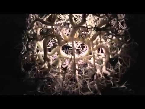 Chandelier Projects Spooky Shadow Forest onto Walls Â«TwistedSifter:,Lighting