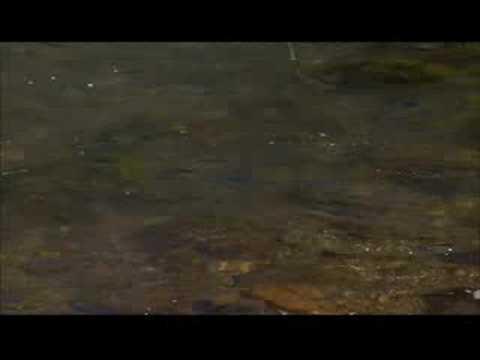 Flyfishing in Patagonia with Beretta