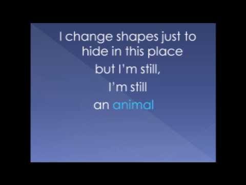 Animal by Miike Snow lyrics