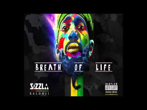 Sizzla - Breath of Life (876) Reggae - February 2016