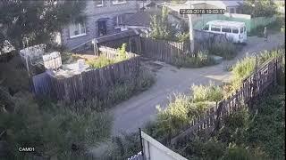 сосед алкаш гавкает на собаку 1 01 R 082018190253