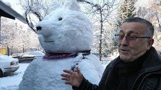 Najveći bijeli medvjed u BiH