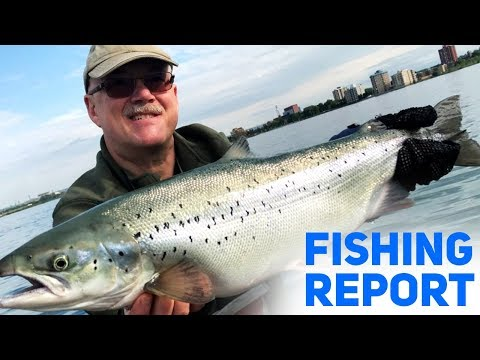 Fantastic Fishing In Sault Ste Marie - Fishing Report