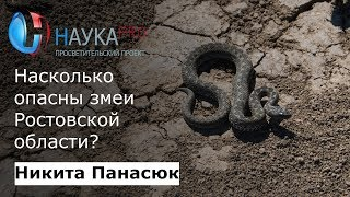 Никита Панасюк - Насколько опасны змеи Ростовской области?