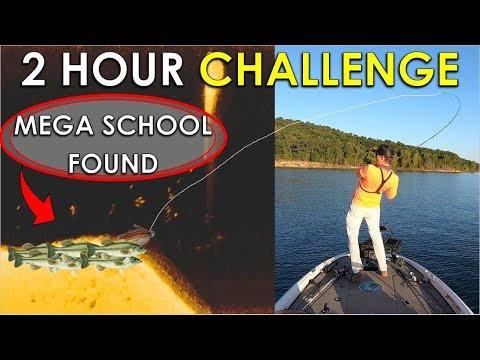 2 Hour Challenge: Mega Bass School Found Summer Fishing