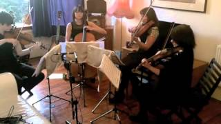 Backyard Skulls by Frightened Rabbit - Cairn String Quartet cover
