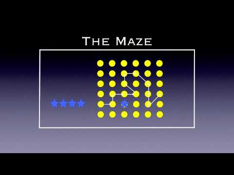 Physed Games - The Maze