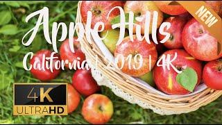 Apple Picking California | Apple Hills | El Dorado | 4K | 2019