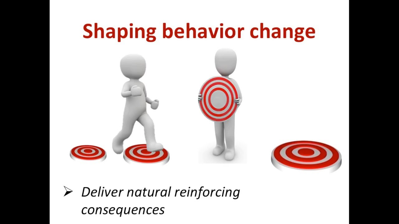 Shaping Behavior Change Reinforcing Progress Step By