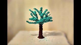 видео Шоколадное дерево