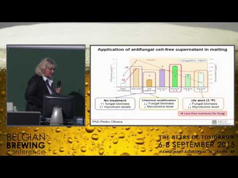 Elke Arendt - The influence of Lactic acid bacteria in malting and brewing