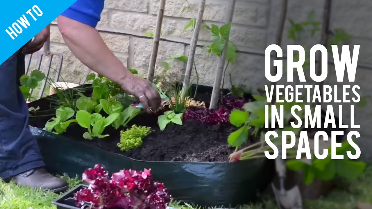 How to grow garden vegetables in small spaces youtube How to make a small garden