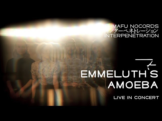 Emmeluth's Amoeba @ Kultur in Graz meets Interpenetration