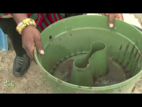 Changing dry land into productive land in Mafia-Anfoe (Ghana) with the Groasis Waterboxx
