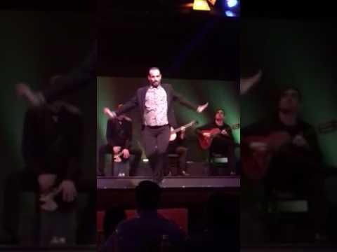 La casa del flamenco 1