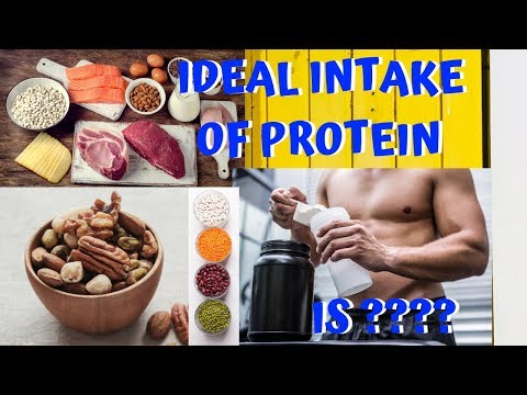 how-to-find-your-ideal-protein-intake