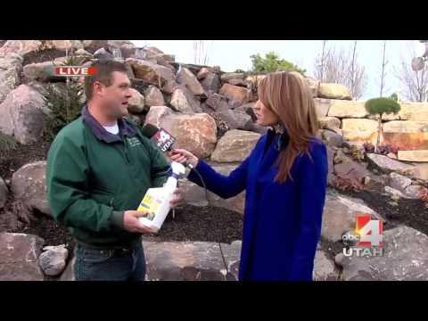 Winter Garden Tips | Salt Lake City | Millcreek Gardens