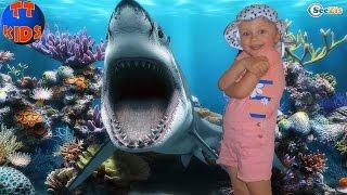 Кукла Беби Борн и Ярослава в Океанариуме Анталии. Каникулы в Турции. Baby Born. Antalya Aquarium