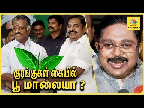 குரங்குகள் கையில் பூ மாலையா ? TTV Dinakaran Slams OPS EPS regarding TWO LEAVES CASE | Latest Speech