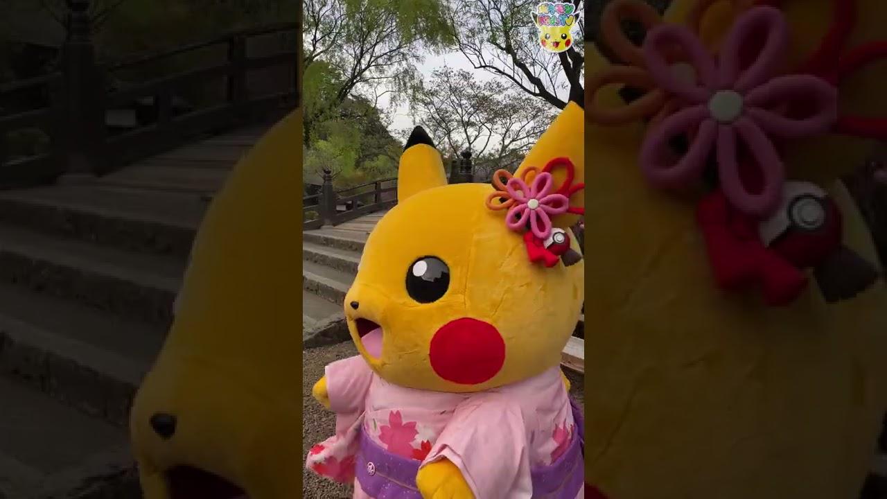 【ポケモン公式】ピカチュウのお花見#Shorts -ポケモン Kids TV