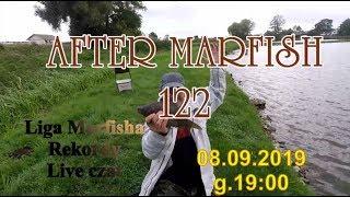 After Marfish # 122 Karpiowo!, Aukcje, Nowe rekordy, Liga Marfisha, Live czat