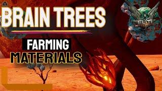 Elite: Dangerous Brain Trees and Farming Materials