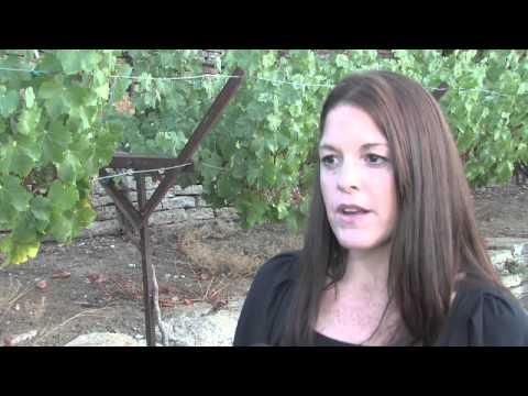 Wetlands And Wildlife Care Center Fundraiser September 2012
