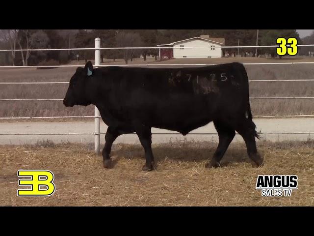 Benoit Angus Lot 33